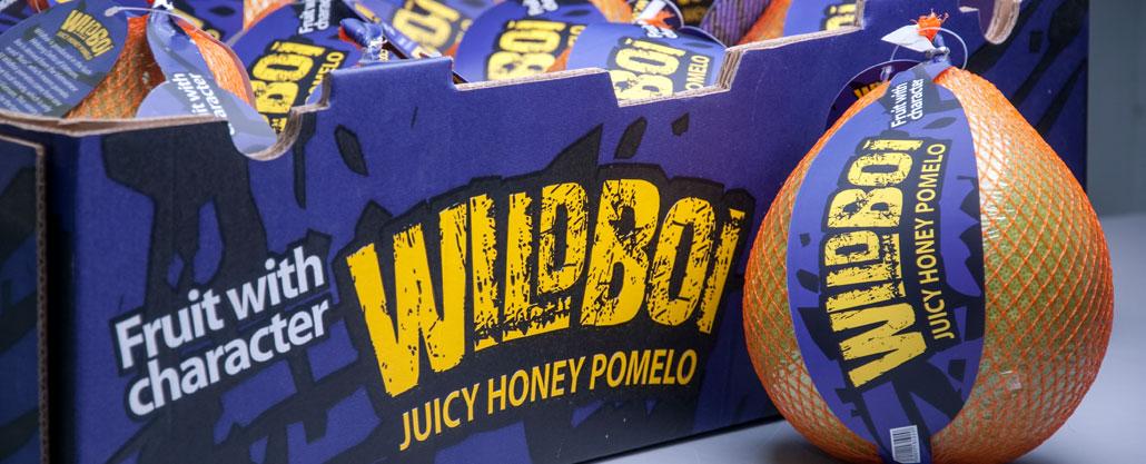 banner-wildboi-box