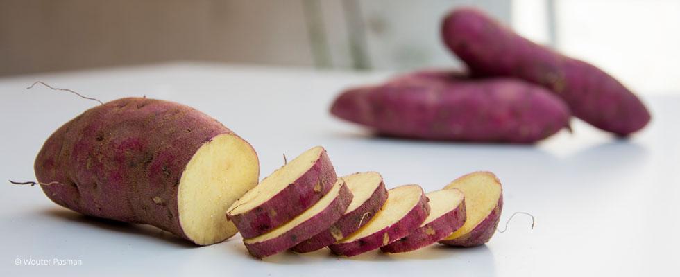 Sweetpotato-980x400