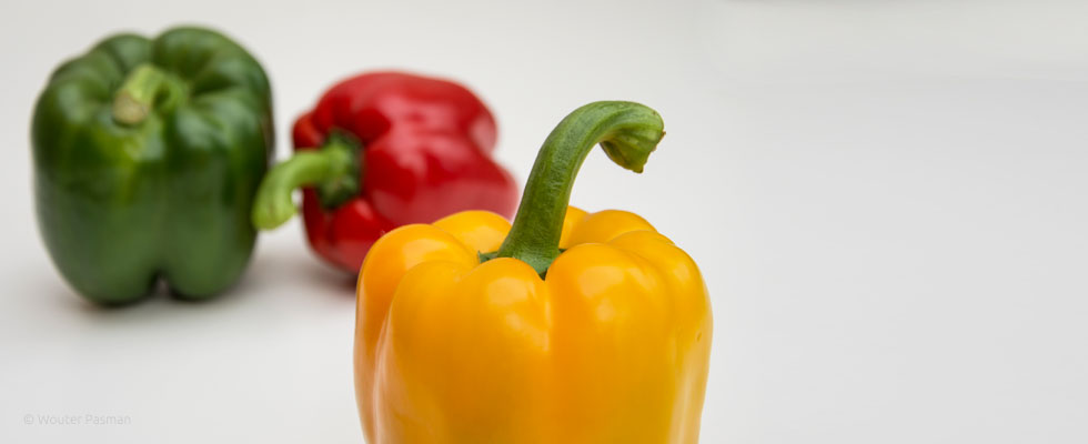 Yellowbellpepper-980x400