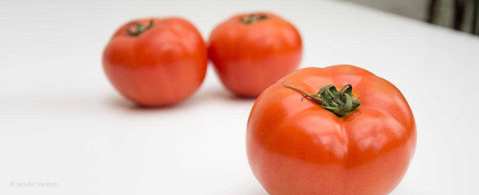 beef-tomato-980x400