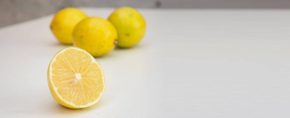 Lemon-980x400